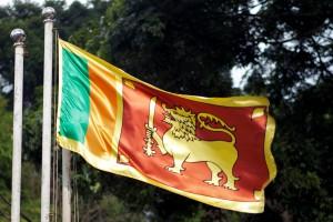 Sri Lankan Flag by Konstantin Zamkov